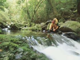 Lower Ballanjui Falls - Accommodation Cooktown