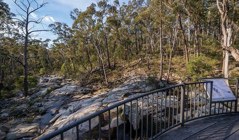 Myanba Gorge walking track - Accommodation Cooktown