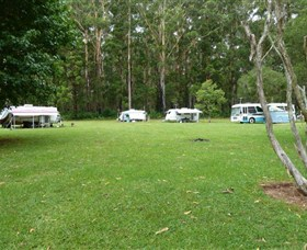 Coopernook Forest Park - Accommodation Cooktown