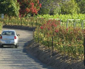 Cassegrain Wines - Accommodation Cooktown