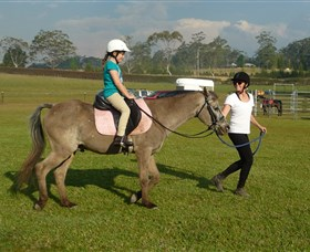 Port Macquarie Horse Riding Centre - Accommodation Cooktown