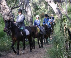 Mirravale Horse Riding School - Accommodation Cooktown
