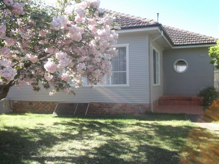 Magnolia Corner - Accommodation Cooktown