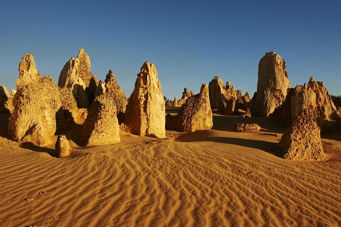Pinnacles Day Trip from Perth Including Yanchep National Park - Accommodation Cooktown