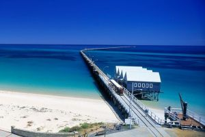 Full-Day Busselton Jetty Train Ride  Dophin Discovery - Accommodation Cooktown