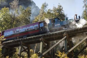 West Coast Wilderness Railway Queenstown Explorer from Strahan - Accommodation Cooktown