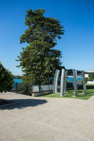 A Cup of Culture in Mackay - Accommodation Cooktown