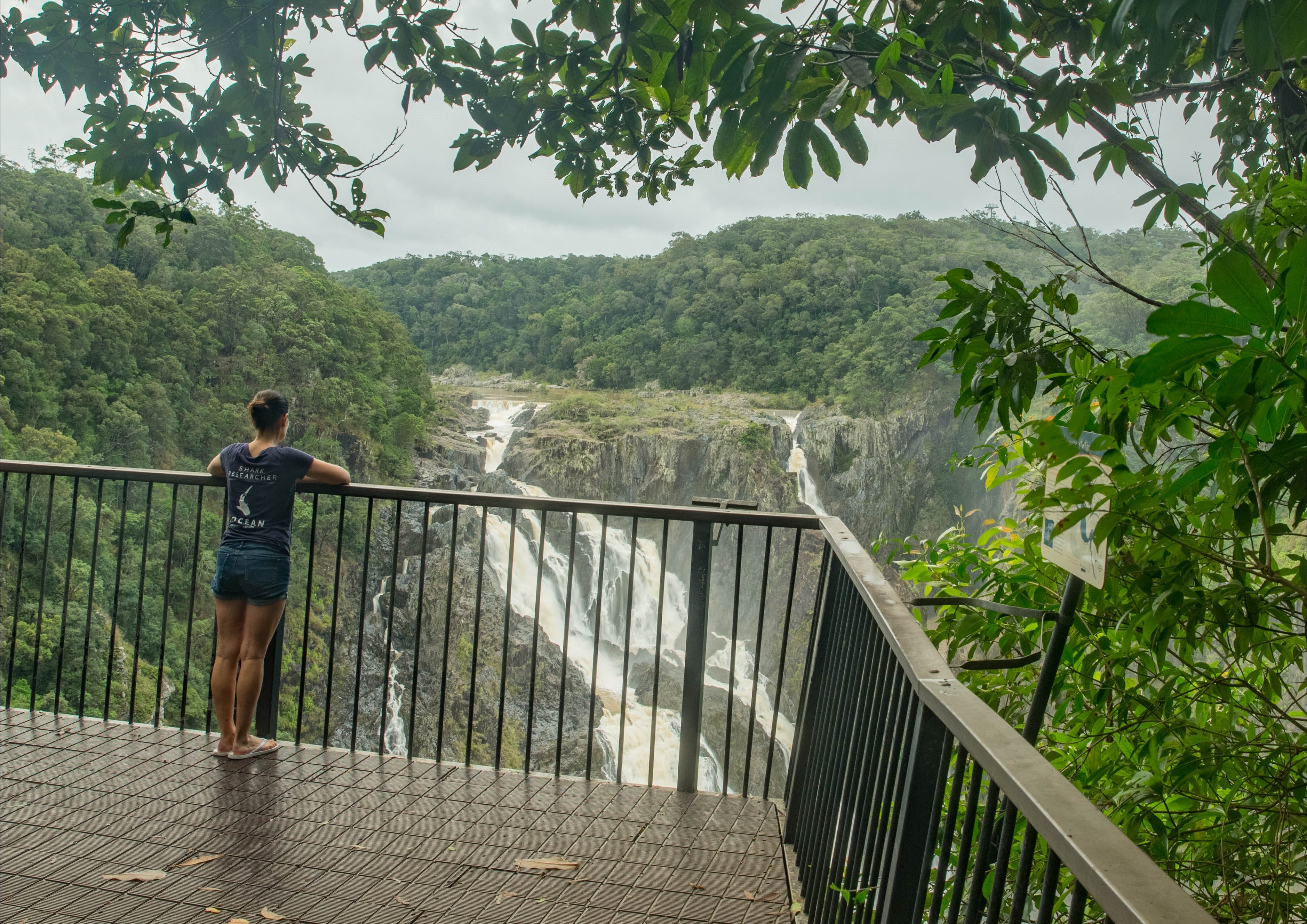Barron Gorge National Park - Accommodation Cooktown