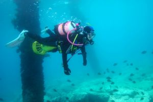 Shellharbour Scuba  and Photography Centre - Accommodation Cooktown