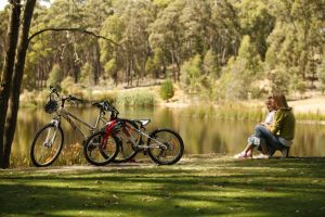 Creswick Regional Park - Accommodation Cooktown