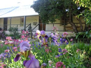Raglan Gallery And Cultural Centre - Accommodation Cooktown