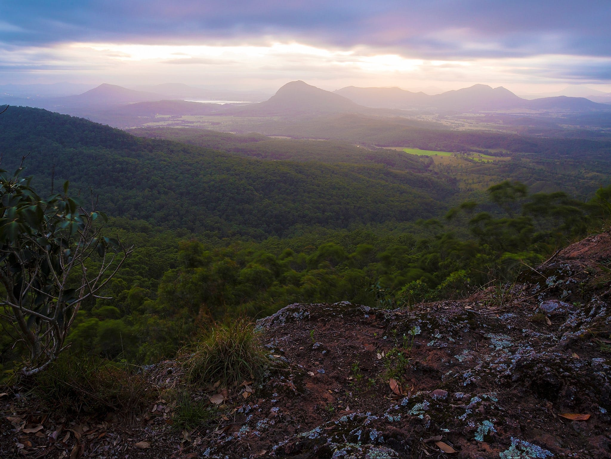 Cunninghams Gap and Spicers Gap Main Range National Park - Accommodation Cooktown