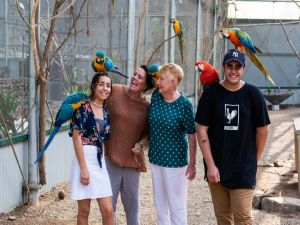 Maleny Botanic Gardens and Bird World - Accommodation Cooktown
