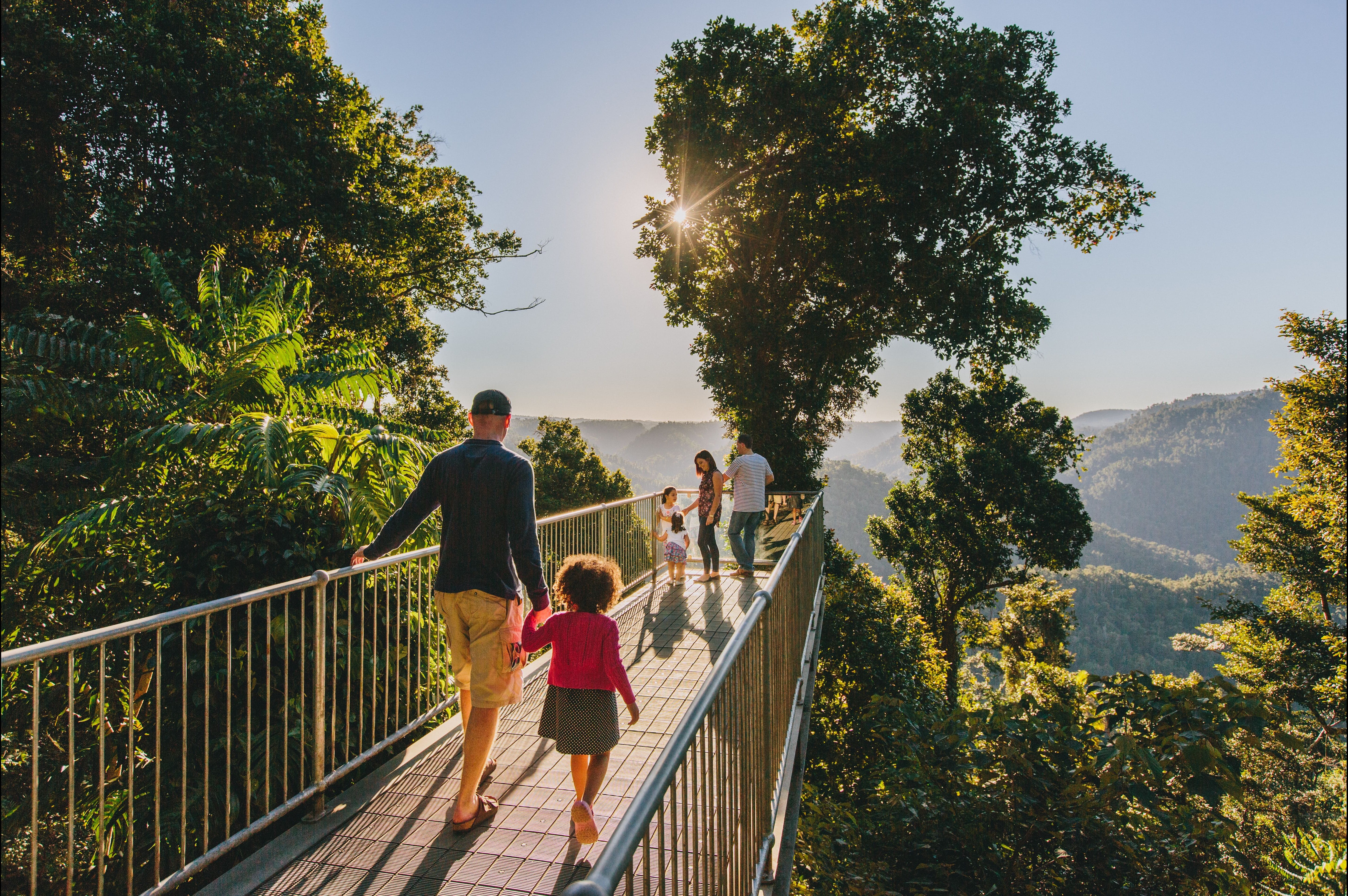 Mamu Tropical Skywalk - Accommodation Cooktown