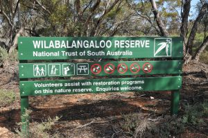 Wilabalangaloo Reserve - Accommodation Cooktown