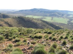Horseshoe Rim 4WD Adventure Track - Accommodation Cooktown