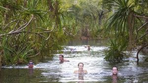 Berry Springs - Accommodation Cooktown