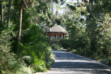 Royal Botanic Gardens Victoria - Accommodation Cooktown
