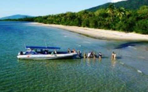 Ocean Safari - Accommodation Cooktown