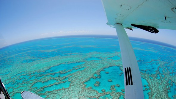 Air Whitsunday Day Tours - Accommodation Cooktown