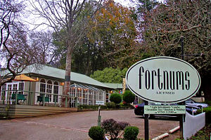 Fortnums Restaurant - Accommodation Cooktown