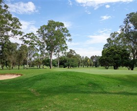 Singleton Golf Club - Accommodation Cooktown