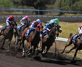 Alice Springs Turf Club - Accommodation Cooktown