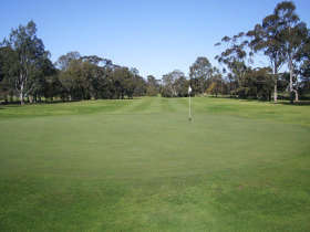 Maffra Golf Club - Accommodation Cooktown