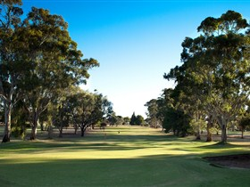 Loxton Golf Club - Accommodation Cooktown