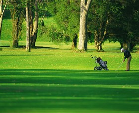Foster Golf Club - Accommodation Cooktown