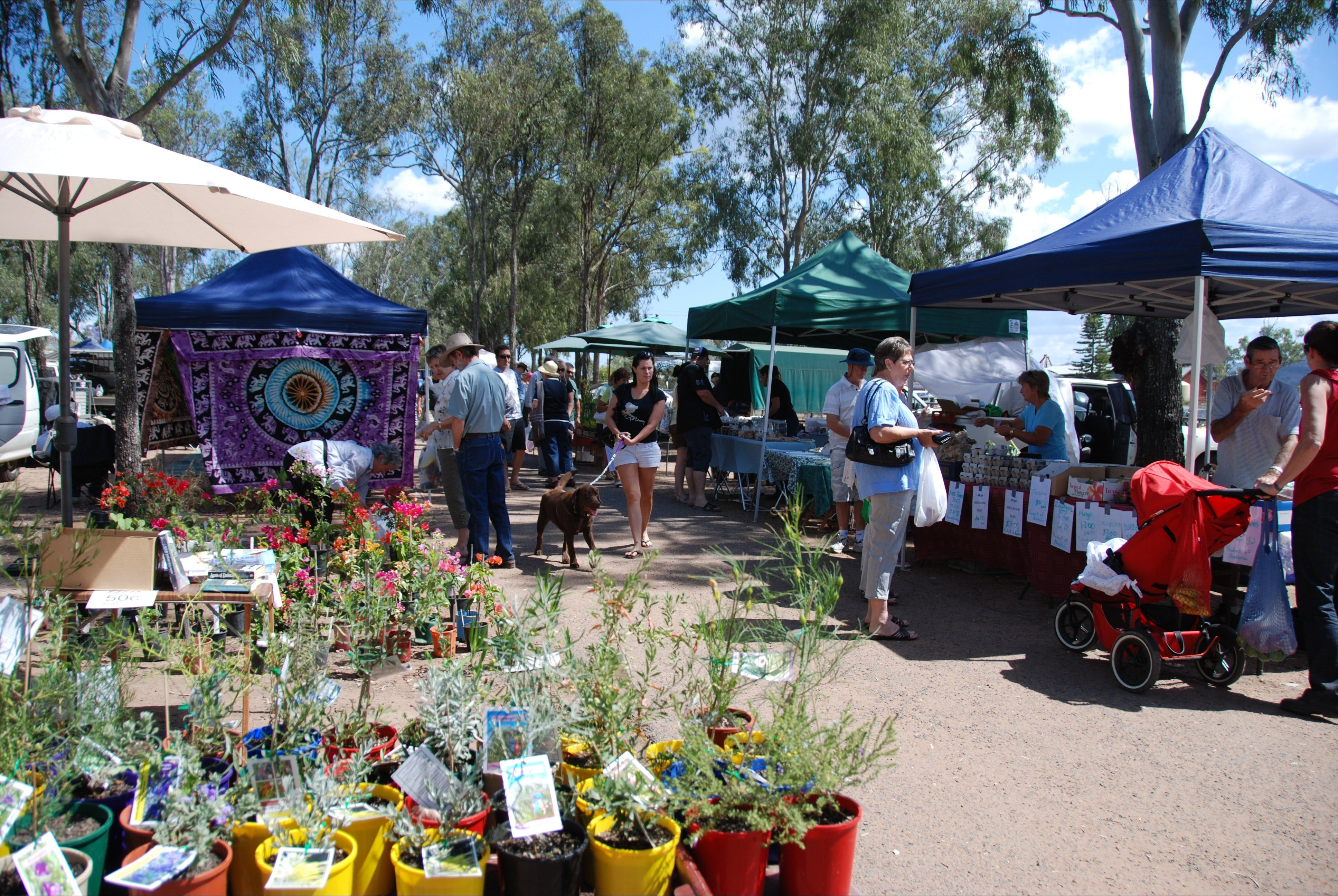 Fernvale Country Markets - Accommodation Cooktown