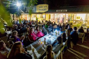 Miles Back to the Bush Festival - Accommodation Cooktown