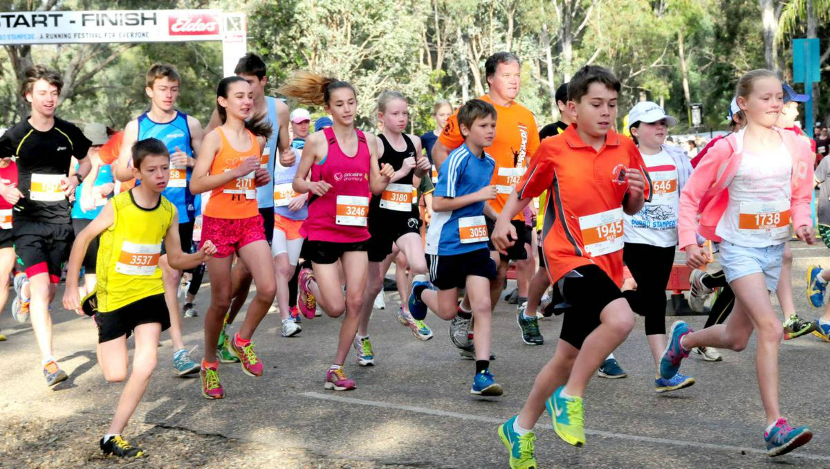 MAAS Group Dubbo Stampede Running Festival - Accommodation Cooktown