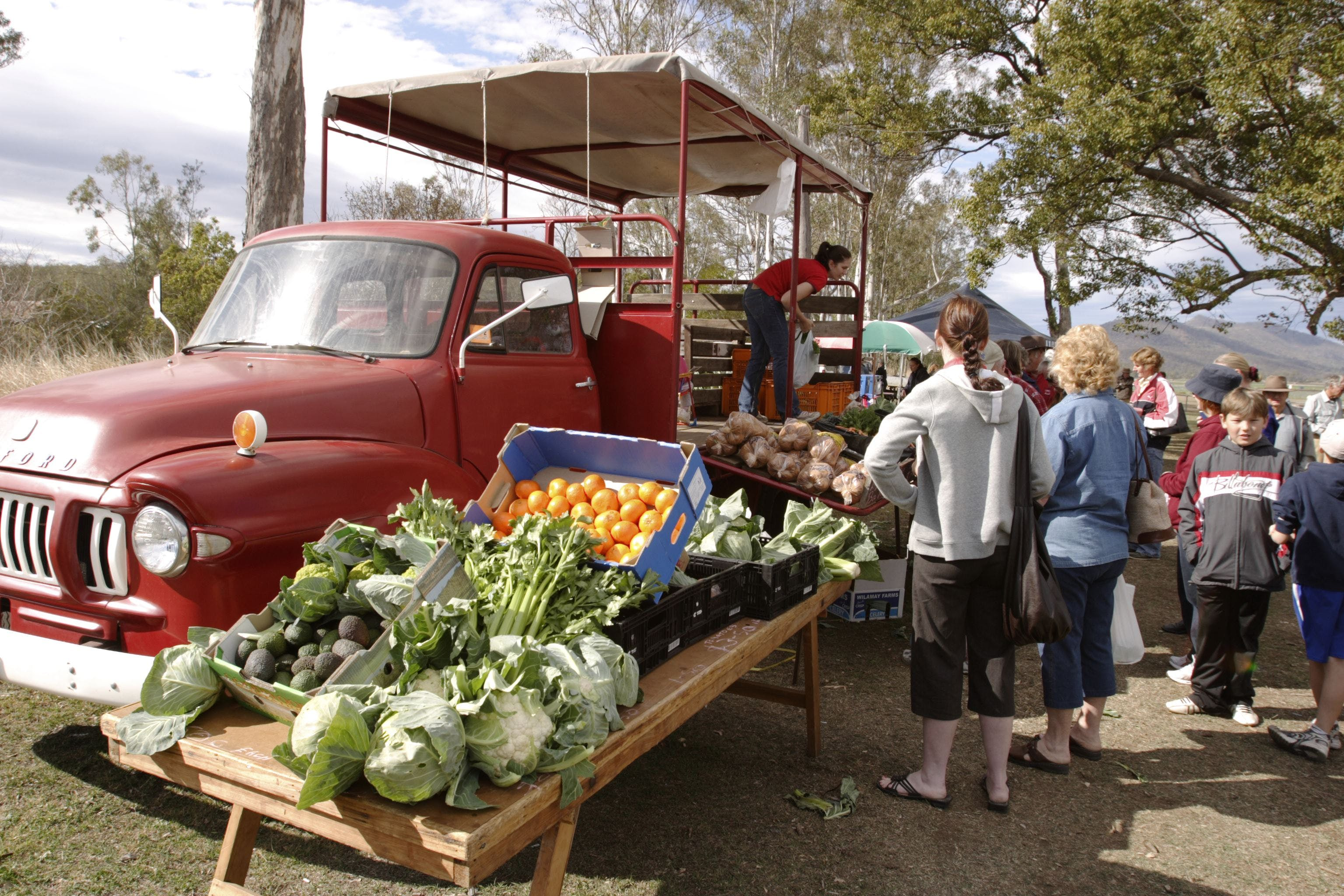Murphys Creek Markets - Accommodation Cooktown