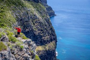 Seven Peaks Walk at Pinetrees Lord Howe Island - Accommodation Cooktown