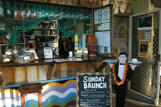 Sheoak Shack Gallery Cafe - Accommodation Cooktown