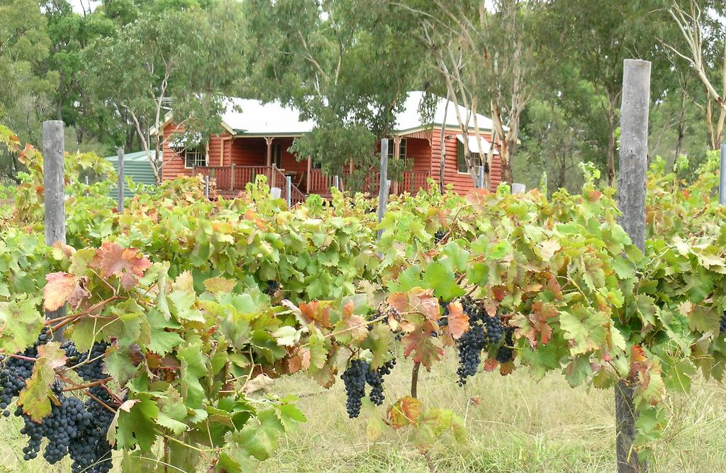 Fergies Hill Spa Cottage  Granite Ridge Wines - Accommodation Cooktown